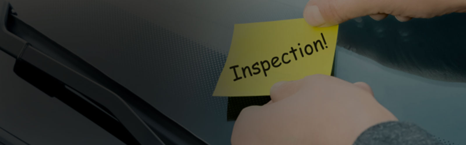 Professional Inspection Services
